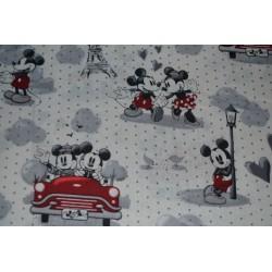 Mickey and Minnie Vintage...